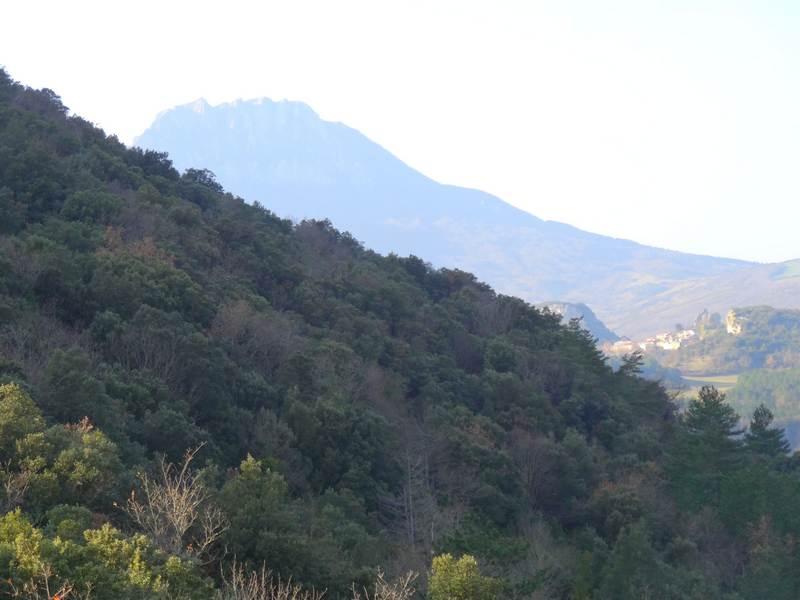 Le pic de Bugarrach et Camps sur Agly