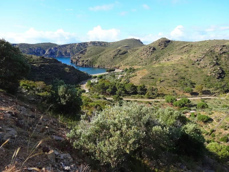 Baie de Cala Joncols