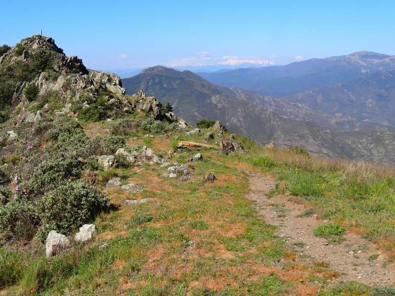 Tour Querroig et chaine du Canigou