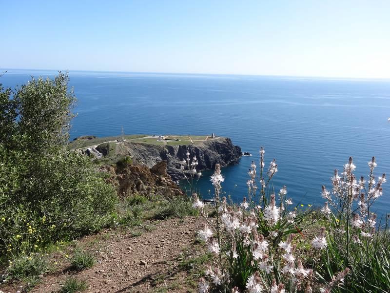 Cap Cerbère
