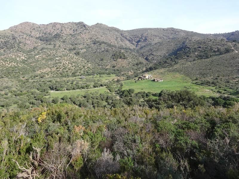 La crête du Puig de l'Aliga