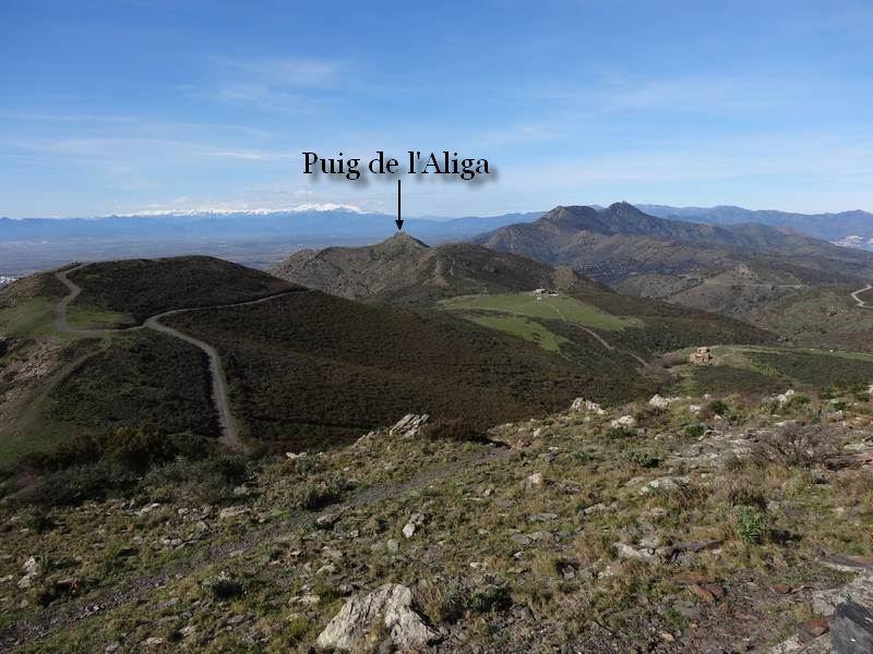 Puig Aliga depuis Puig Alt