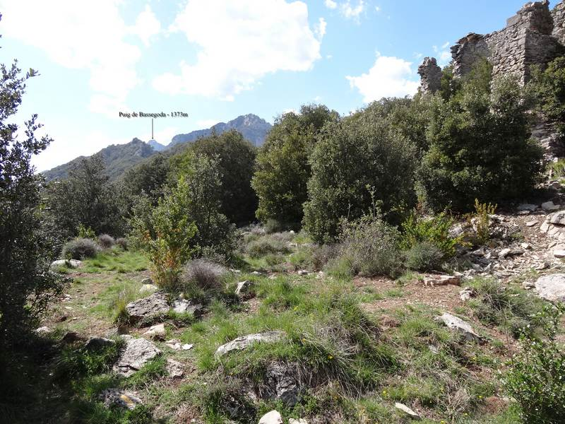 Bassegoda depuis Sant Joan de Mussols