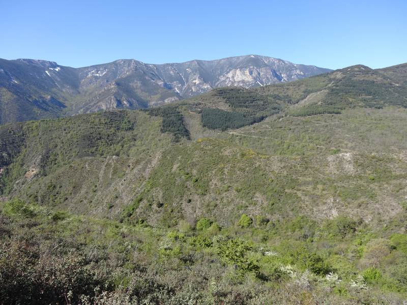 Massif du mont Corona
