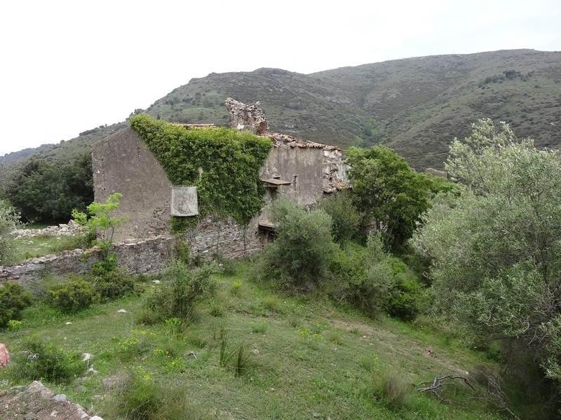 Ruines de Montjoi Baix